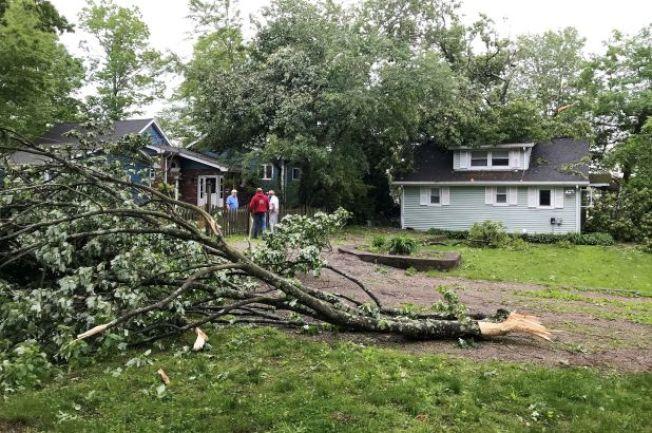 龙卷风侵袭新州,刮倒居民门前大树。 (美联社)