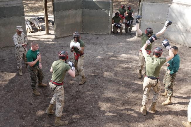 新兵在教官指導下,進行搏鬥訓練。(記者金春香/攝影)