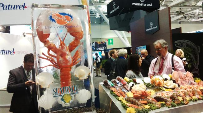 緬因學者發現龍蝦血有護膚和治病療效,已申請專利,要開發相關產品。(記者唐嘉麗/攝影)