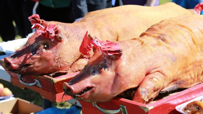 粵籍移民給先人獻上獻上燒豬等供品。(開平同鄉會/提供)
