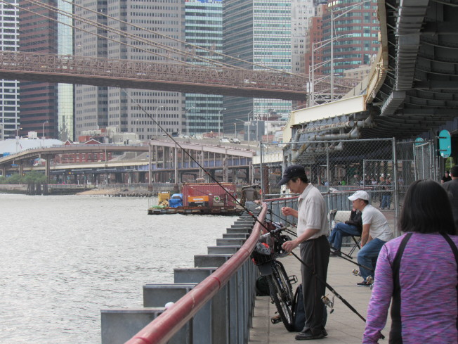 東河遭油污染,雖然當局已警告民眾避免前往釣魚,仍有許多華人釣客前往垂釣。(記者顏嘉瑩/攝影)