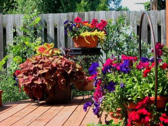 容器花園成為近年景觀設計的新寵。(取自Pinterest)