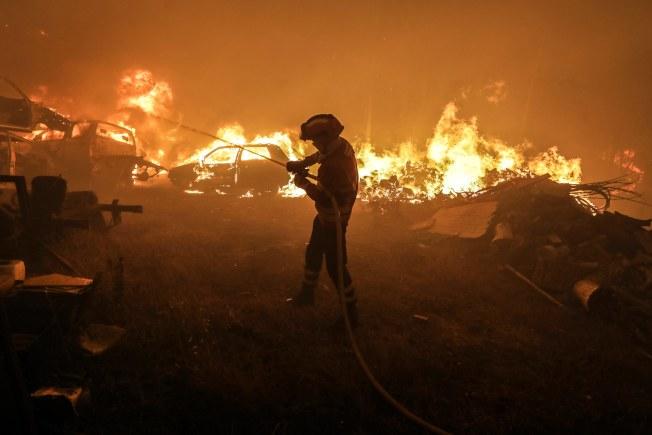 葡萄牙中部17日發生森林大火,至少造成62人死亡,為葡萄牙半世紀來「最大的慘劇」。(歐新社)