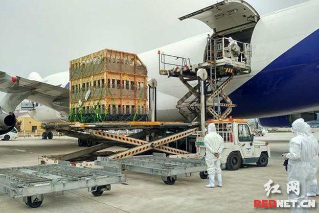1012頭美國種豬18日搭乘波音747包機抵達湖南,降落在長沙黃花國際機場。(取材自紅網)