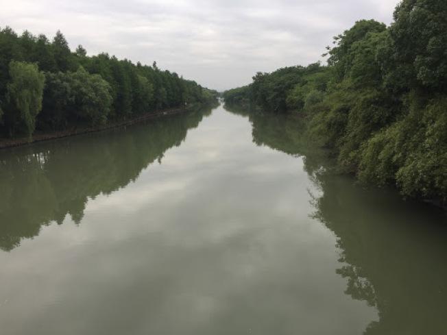 西溪濕地綠色天地。