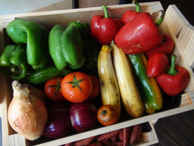 多吃蔬果能促進腸道菌相健康。(本報資料照片)