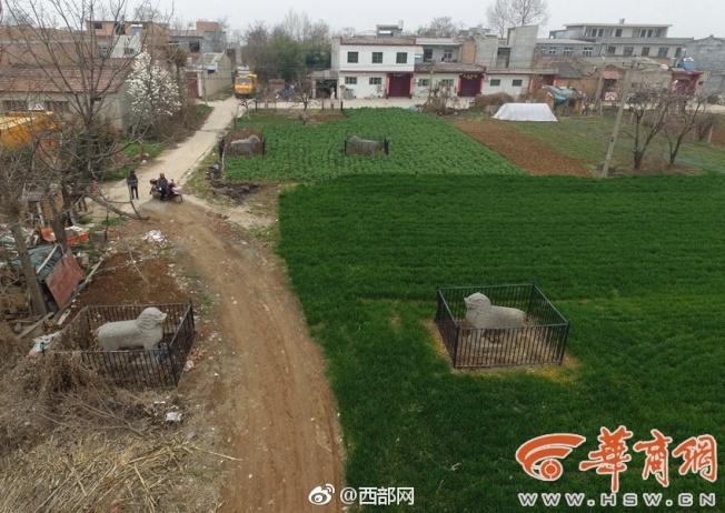 村子分布在張侯墳神道兩側,陵墓石刻文物保存較為完整。(取材自華商報)