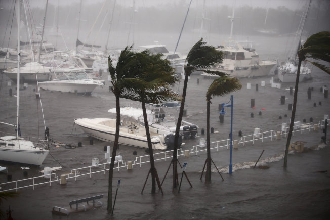 厄瑪颶風10日上午以四級威力登陸南佛州, 狂風暴雨,聲勢驚人,邁阿密街道上的棕櫚樹難抵強風,被吹得東倒西歪。船隻全部進港避風。(路透)