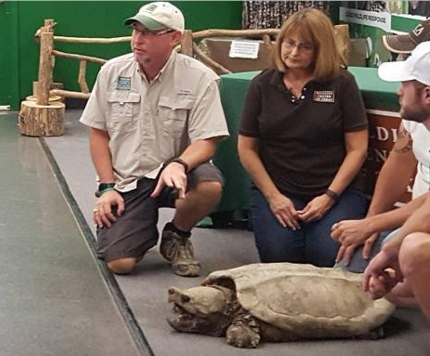 鱷龜於12日下午放生。圖為休士頓動物保護組織舉行放生說明會。(休士頓動物保護組織提供)
