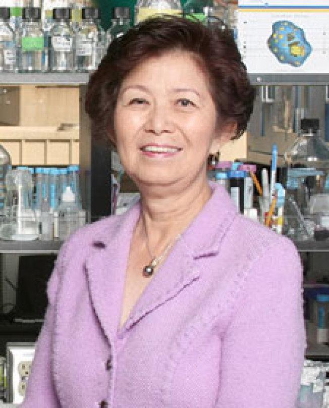 來自台灣,同時也是中研院院士的南加大藥學院華裔教授陳景虹,多年來研究單胺氧化酶A對腦部發展、以及腦癌和前列腺癌等的影響。(經文處提供)