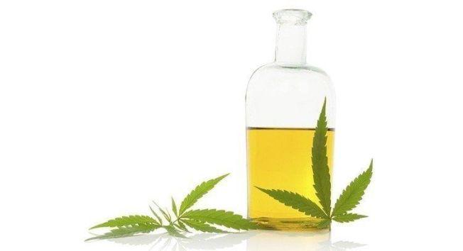 專家指出,無論動物或植物油,下鍋與蔥薑蒜爆香,油過發煙溫度會產生「過氧化物」,過量食用提高心血管疾病風險。圖/報系資料照