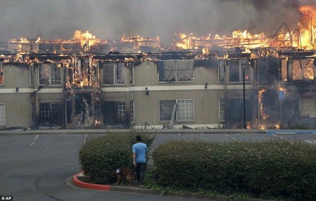 北加州納帕郡附近一排民宅被焚毀。(美聯社)