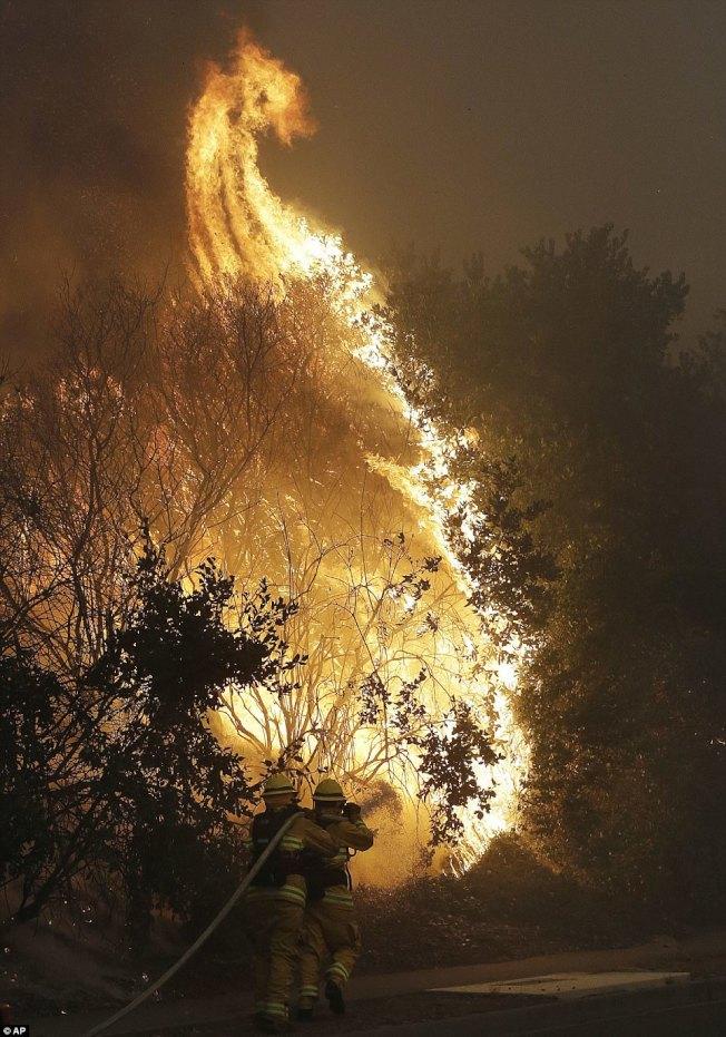 北加那帕郡消防員9日正在奮力救火。(美聯社)