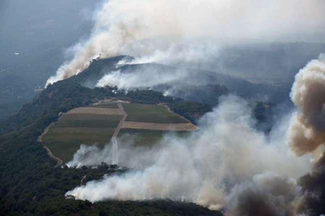納帕東北山坡上野火焚燒,煙霧瀰漫,濃煙吹到舊金山,不見天日。(美聯社)