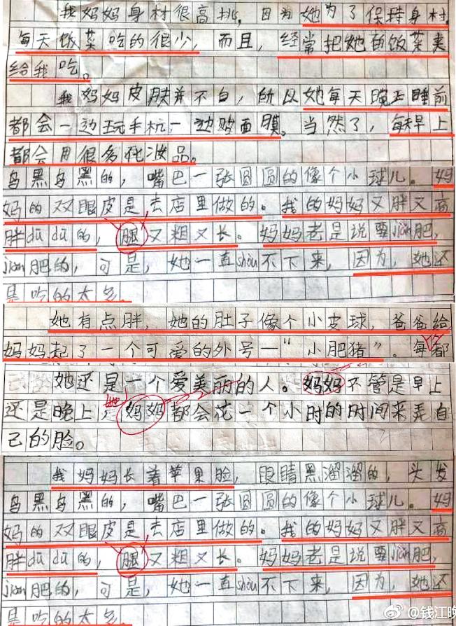 小學生作文出賣愛美的媽媽。(取材自微博)