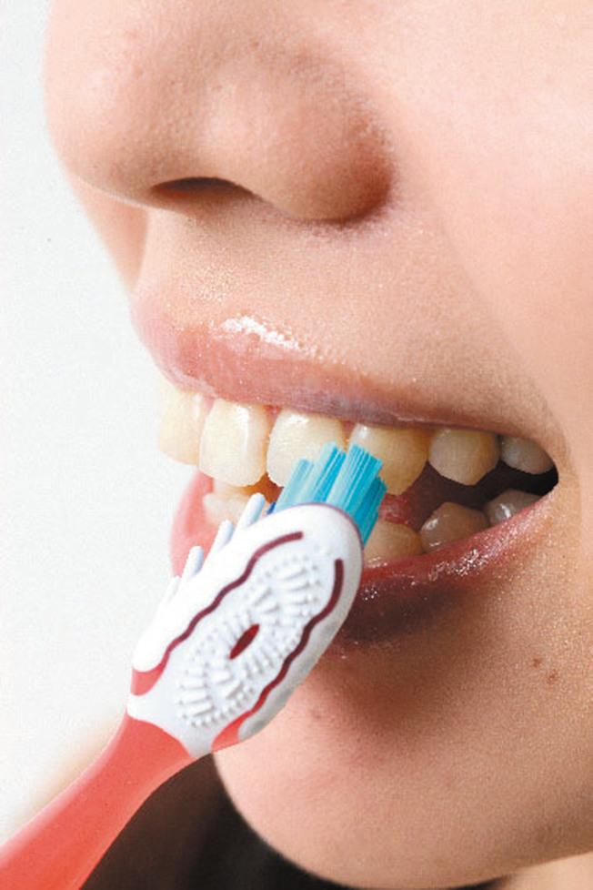 牙齦變為暗紅色、牙齦出血,都是牙周病前兆,要改善牙齦出血,必須先選對牙刷。(本報資料照片)