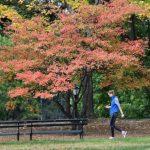剛過最暖10月 新州周五急降溫
