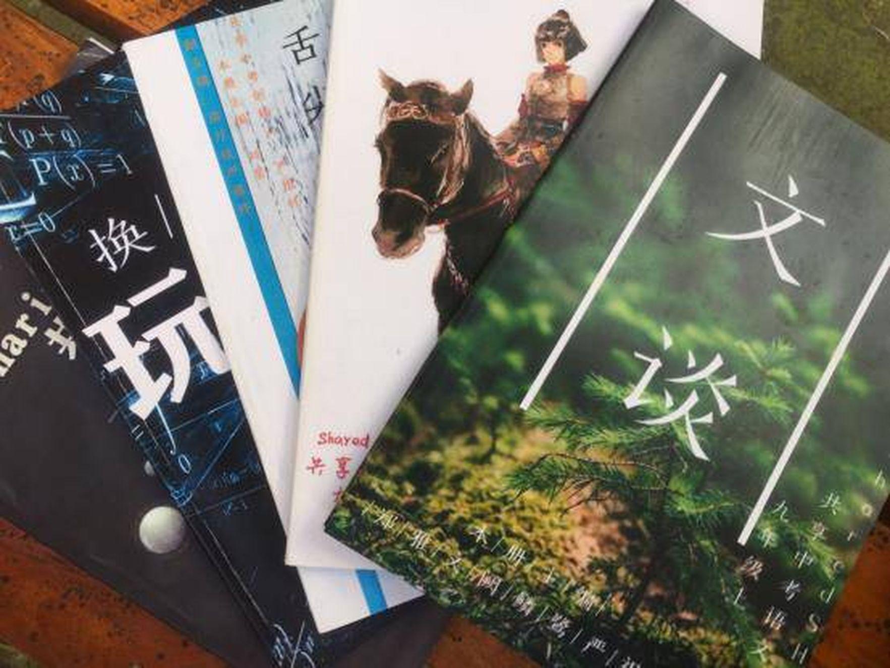 《共享中考》一套共五冊,包含數學、語文、英語、物理和化學。(取材自中國新聞網)