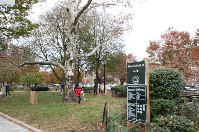 MacDonald Park位於森林小丘的中心地帶。(記者劉大琪/攝影)