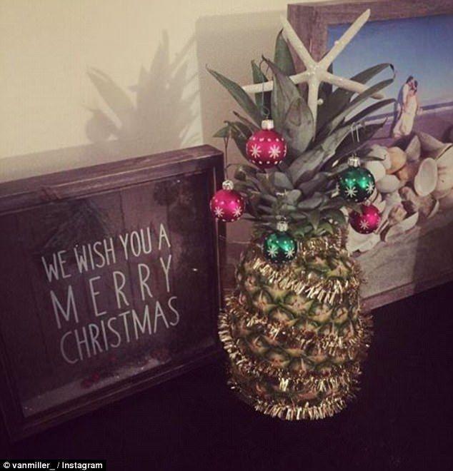 耶誕鳳梨葉冠上有小球裝飾。(翻攝自英國每日郵報、vanmiller_IG)
