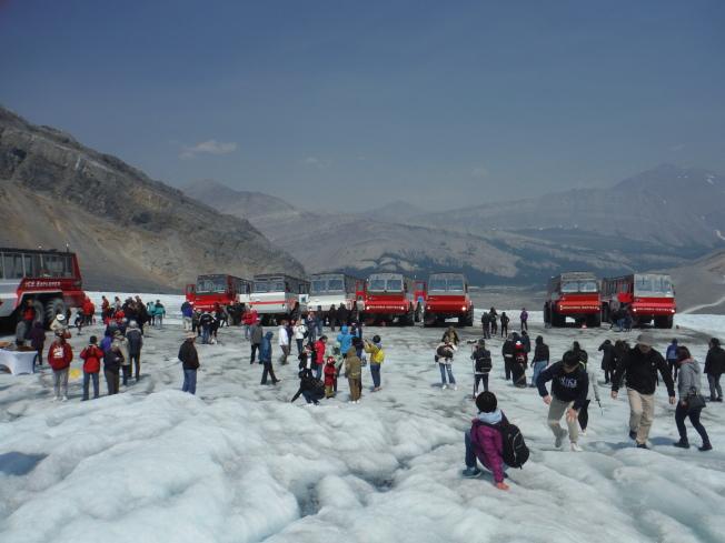 阿薩巴斯卡冰川。