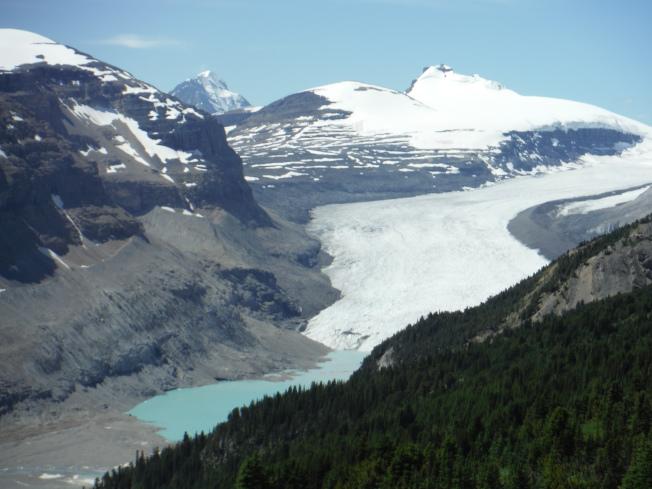 莎士克灣冰川。
