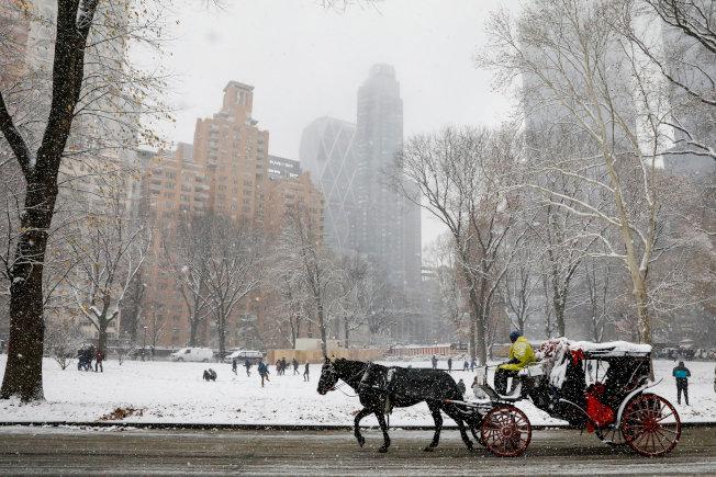 紐約今冬初雪,中央公園的觀光馬車沒有休息 。(路透)