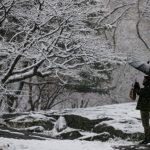 〈圖輯〉 紐約今冬第一場雪