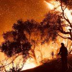加州防野火 管線安規趨嚴