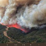 加州野火經損 今年估5.4兆