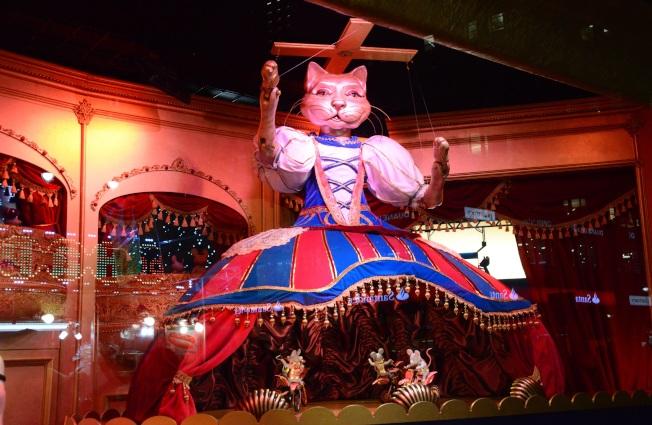 梅西百貨櫥窗中身穿舞衣的貓咪。