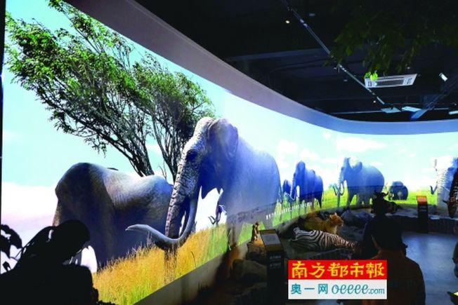 廣州動物園宣布,2018年元旦廣州動物園將迎來60歲生日,當天將開放全球第一座真正意義上的V R動物園。(取材自南方都市報)