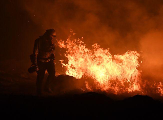 氣候條件改變,加州奪命山火頻發。(Getty Images)