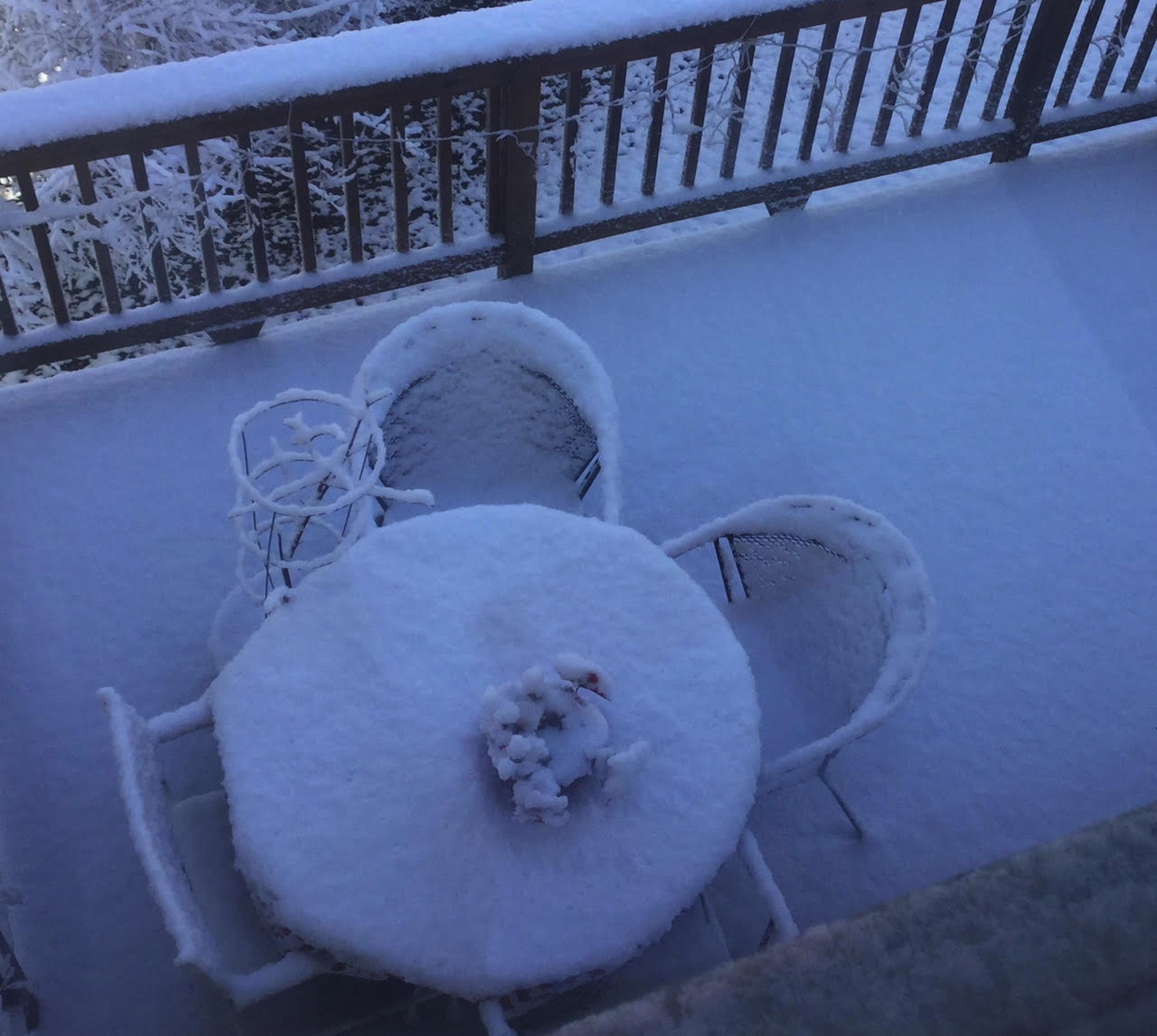 虛席以待。(吳淑梅 2017/12/23 @密蘇里州聖路易年底第一場雪)
