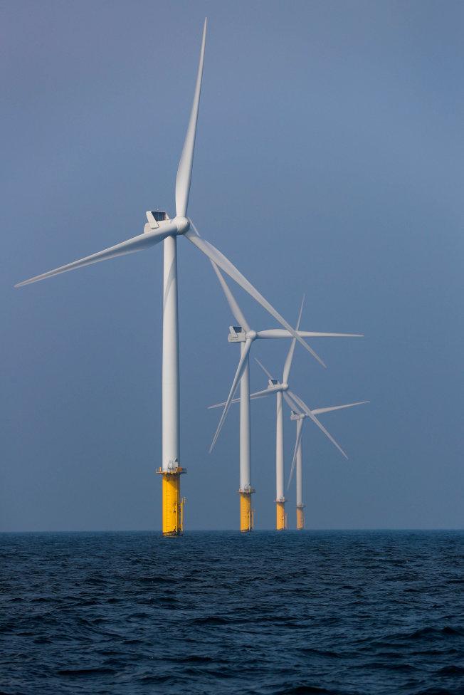 荷蘭離岸風力電場。(路透)