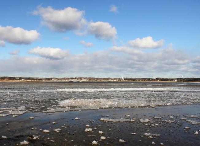 波士頓地區創紀錄寒冬導致鱈魚角海域溫度極低,海水結冰。(取自大西洋大白鯊保護區臉書)