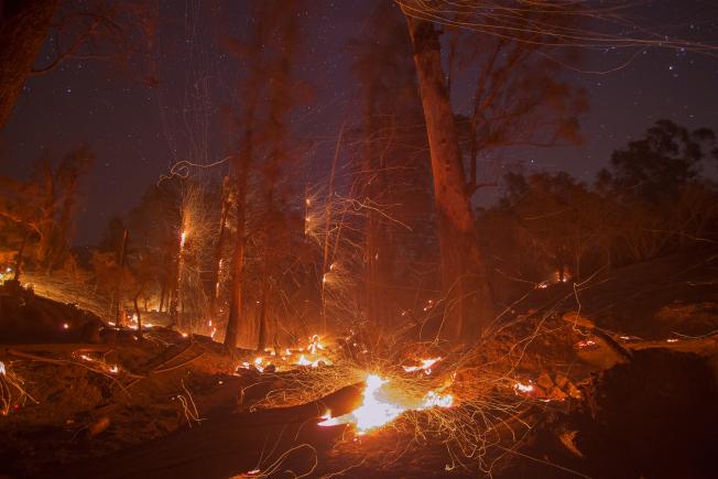 圖為去年在南加州肆虐的托馬斯野火。(Getty Images)
