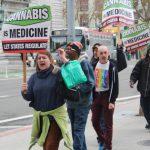 藥用大麻病人團體 轟64號提案
