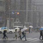 三種自然現象大亂鬥 撞出東京20年罕見大雪