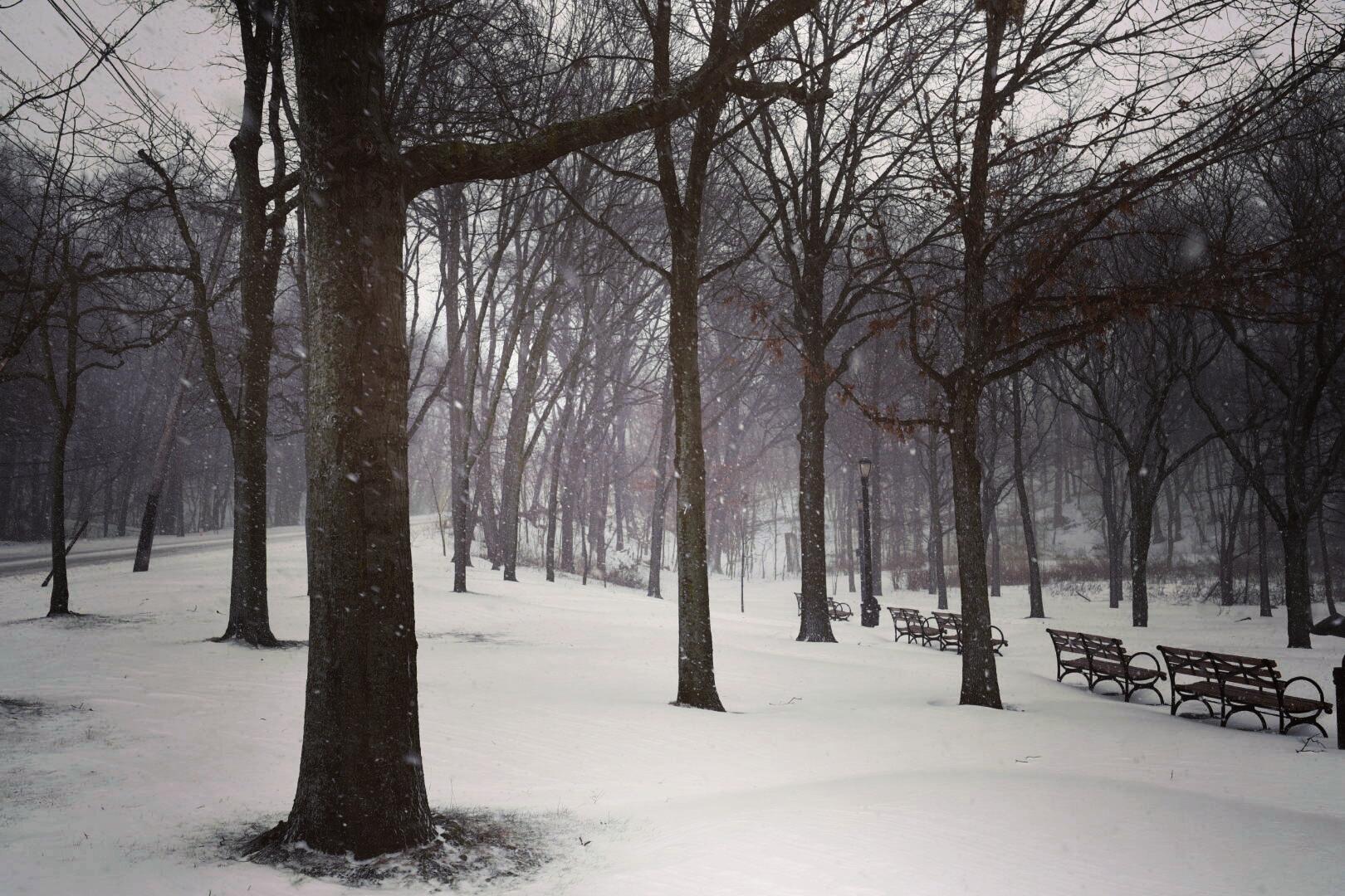 大雪中的公園,空無一人的座位,屹立不倒的樹木。(網友笨小孩@紐約皇后區Oakland Lake)
