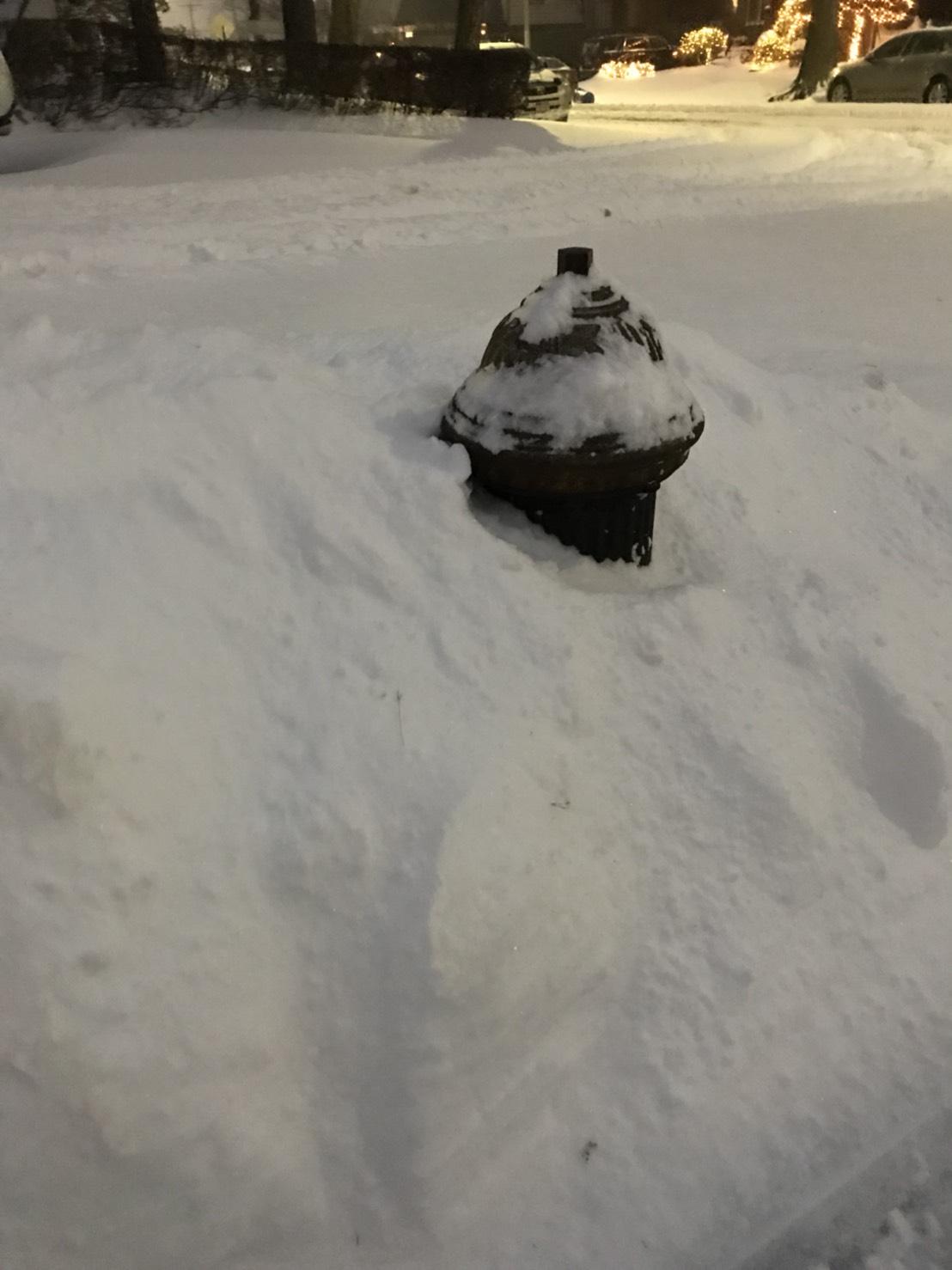 紐約白石鎮,我家的消防栓要感冒了。(網友巧巧01/04/2018 @紐約)