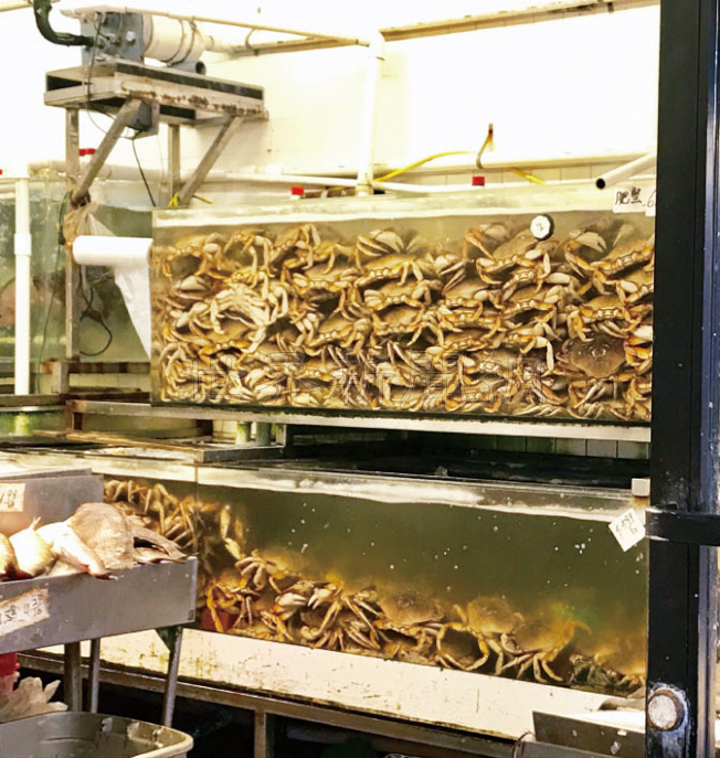 華埠一家海鮮攤檔有數量相當充足的肉蟹出售。(記者黃少華/攝影)