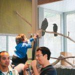 藍道博物館重啟 領兒童親近科學