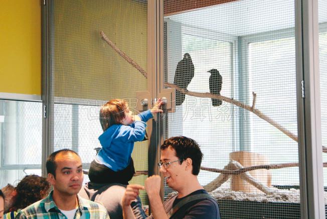 藍道博物館內有個微縮的動物園。(記者李晗/攝影)