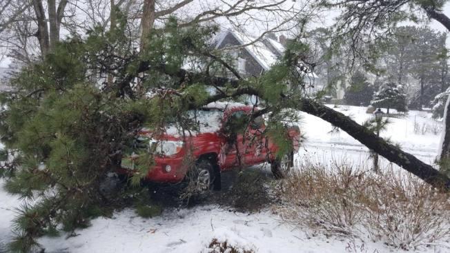 正在肆虐新英格蘭地區的暴風雪再度吹倒上百棵樹,造成大面積停電。(取自麻州Falmouth警局臉書)