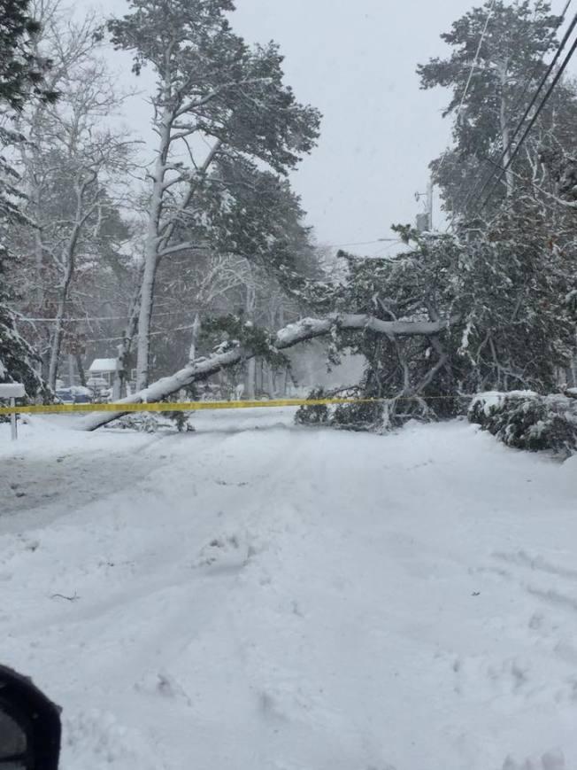 麻州州長貝克今晨敦促居民盡量留在家中躲避,不要開車上路,當前能見度低、被雪覆蓋且濕滑道路造成十分危險的路況。(取自麻州Falmouth警局臉書)