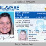 保護隱私+攔查效率 德拉瓦推「行動駕照」