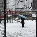 暴風雪不減玩興 華人孩子雪中作樂