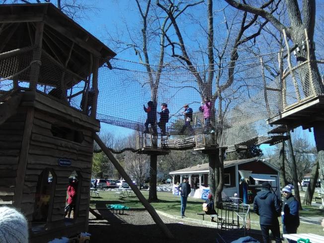 在皮爾斯營地,孩子們在樹屋上玩耍。(韓傑/攝影)