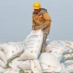 因應貿易戰 中國取消豆粕出口退稅
